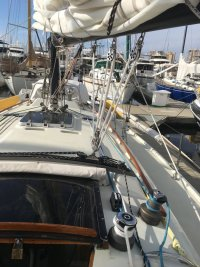 regatta 2.JPG