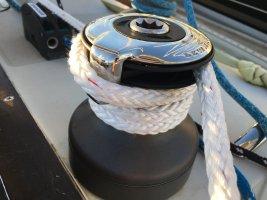 regatta 1.JPG